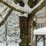 zimni den - 2.2.2017 085