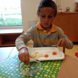 zari - ovocny salat (4)